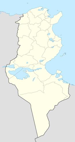 domain names in tunisia